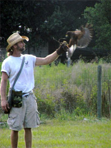 Justin Matthews of Matthews Wildlife Rescue